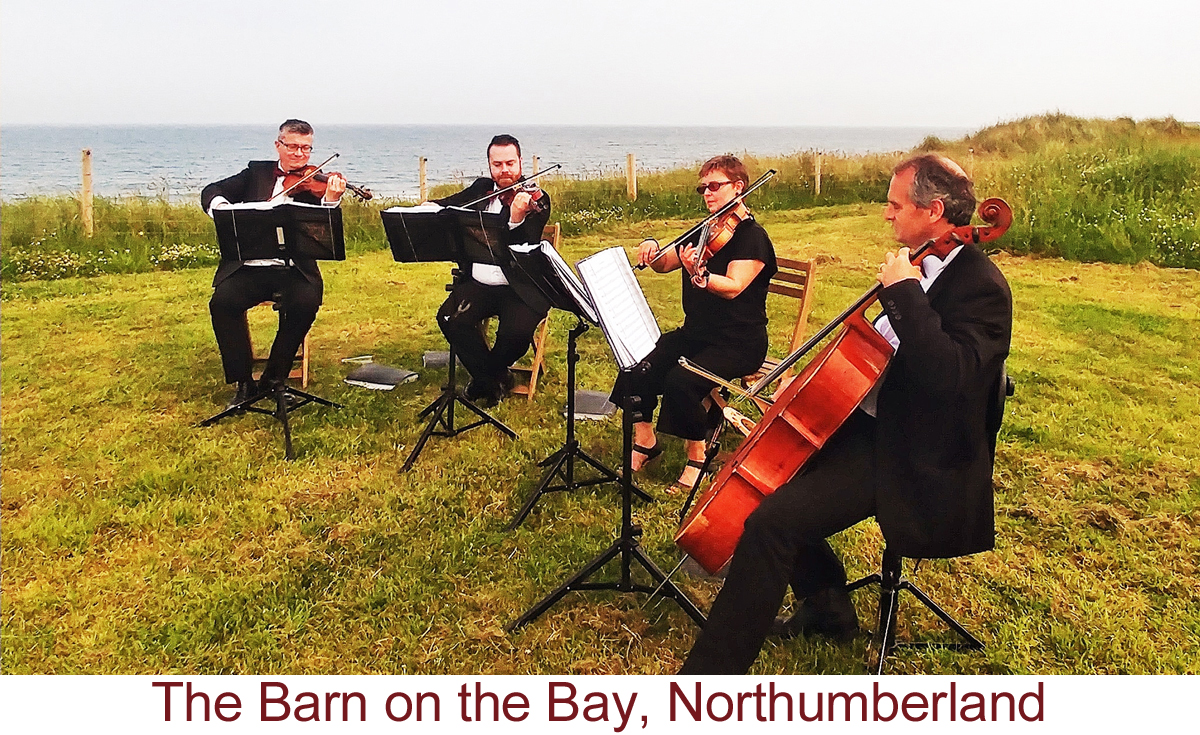 North East Soiree String Quartet_BarnOnTheBay